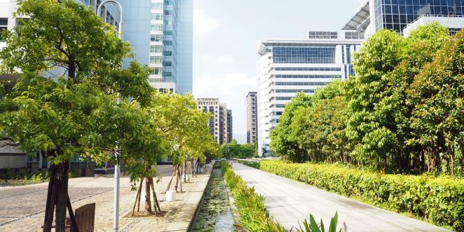 Садово-ландшафтное обустройство и строительство спортивных площадок