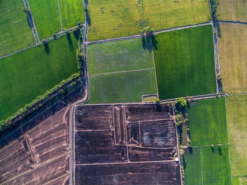 Landwirtschaftliche Dränung