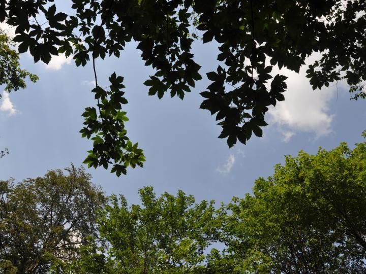 Kvalita, životní prostředí a energie