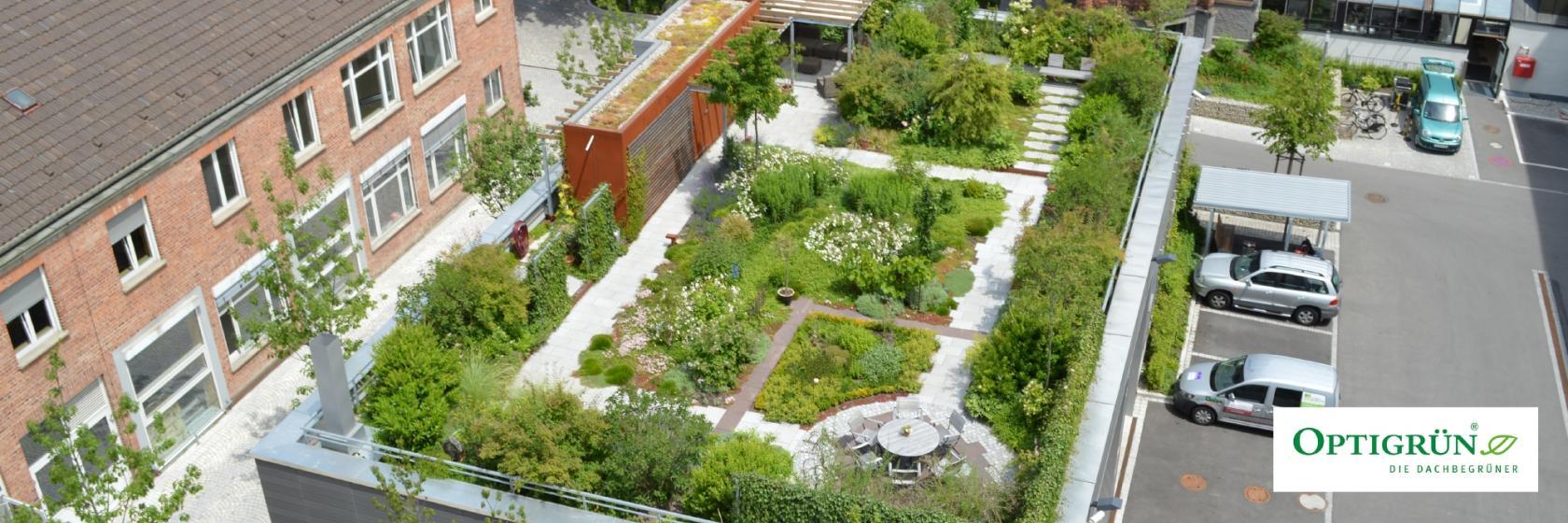 Zusammenspiel von Dachbegrünung im Hochbau und Regenwassermanagement im Tiefbau