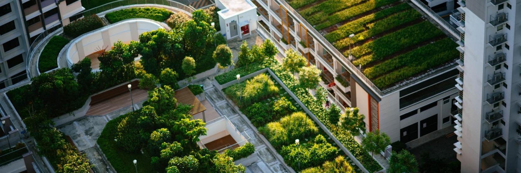 Klimagerechte Stadtplanung