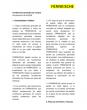 Allgemeine Einkaufsbedingungen - FRÄNKISCHE IB (es)